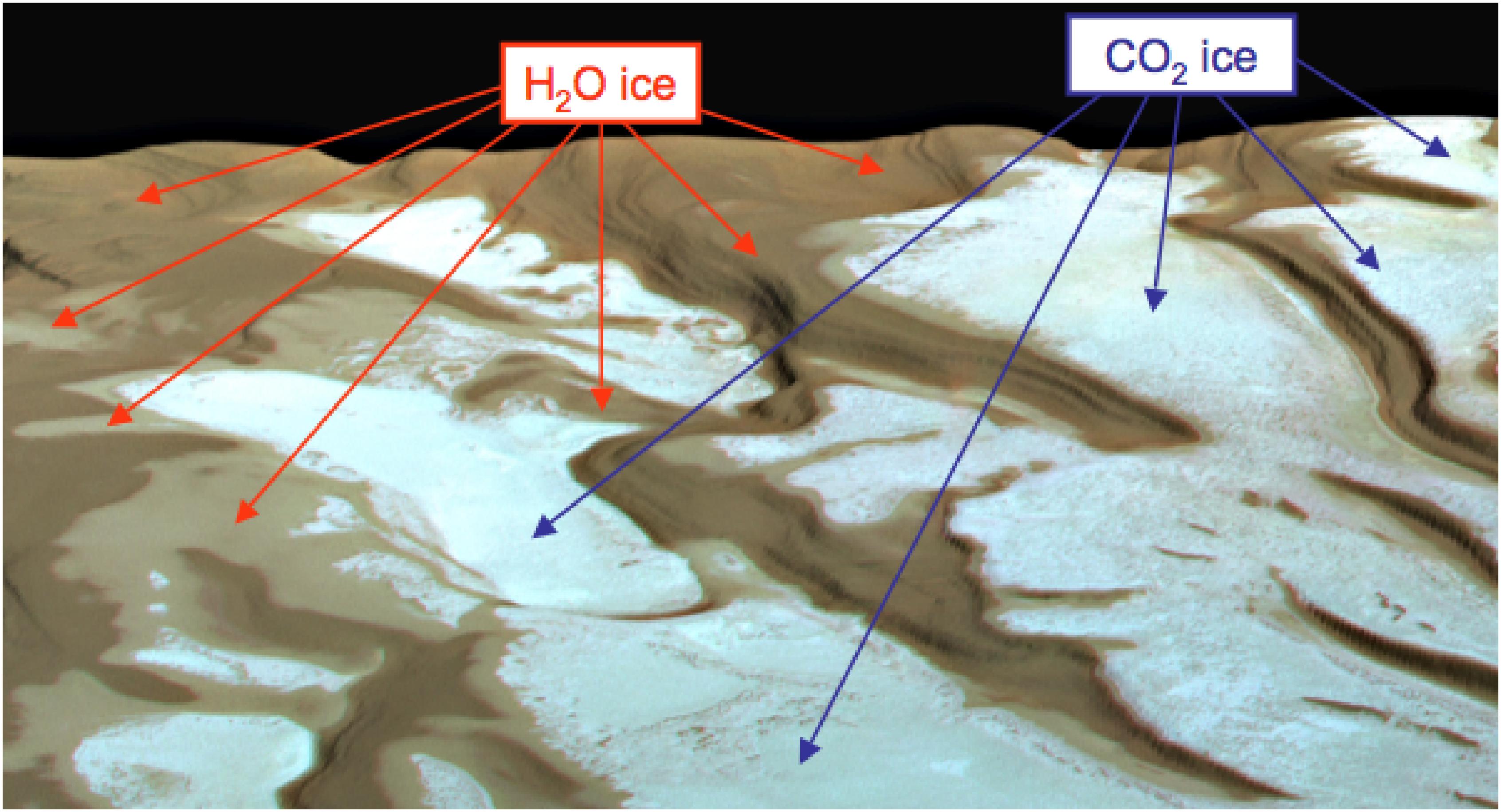 Diversità nel ghiaccio al Polo Sud.