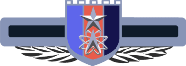 Strategic Support Force