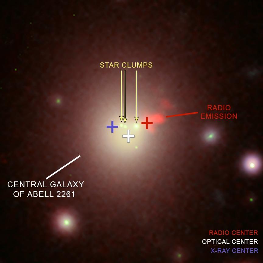 Abel 2261 buchi neri supermassicci