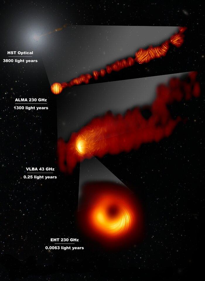 M87 in luce polarizzata
