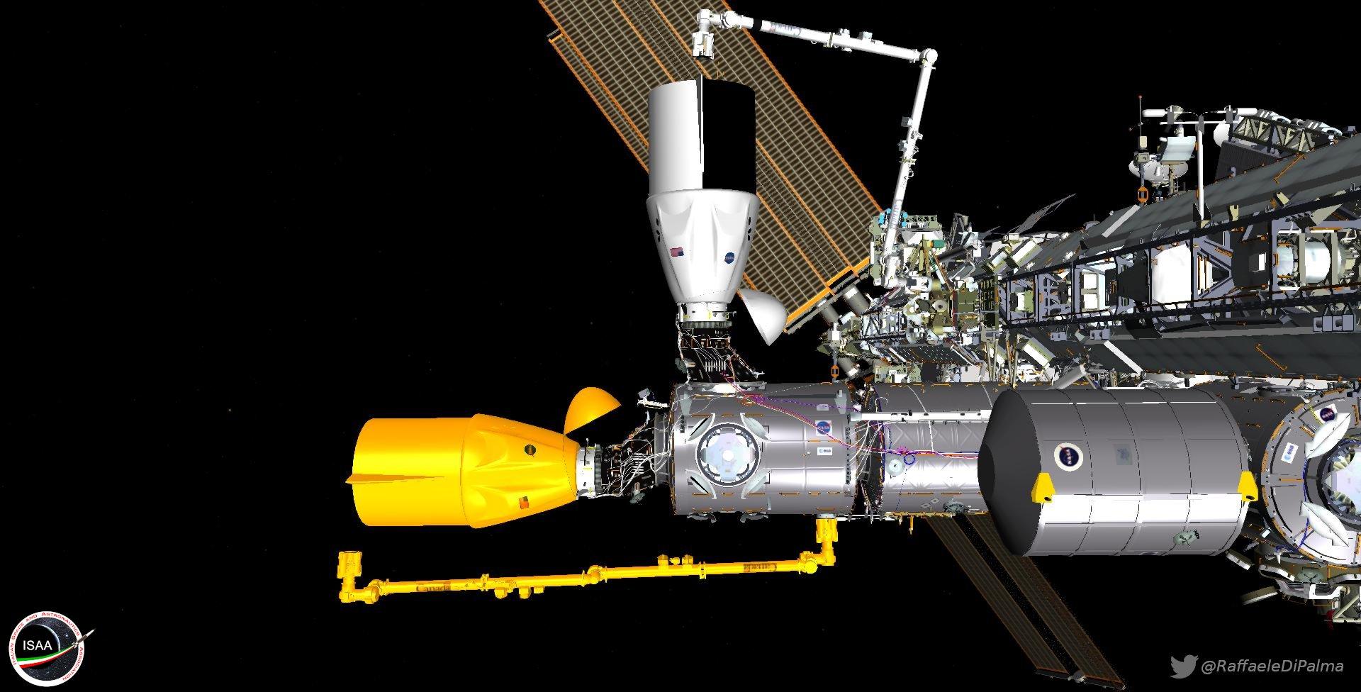 Immagine di Raffaele Di Palma che mostra la differente portata del Canadarm e l'impossibilità di raggiungere la stiva di una Dragon attraccata al PMA-2. Credits: NASA/ Raffaele Di Palma.