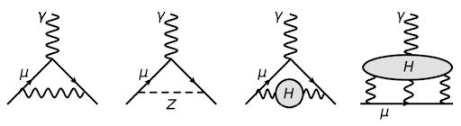 Diagrammi di Feynman delle interazioni tra muone e campo magnetico.