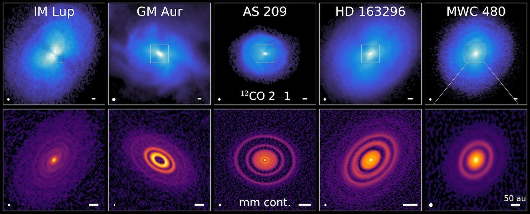 Rappresentazione dei dischi circumstellari studiati per ottenere MAPS