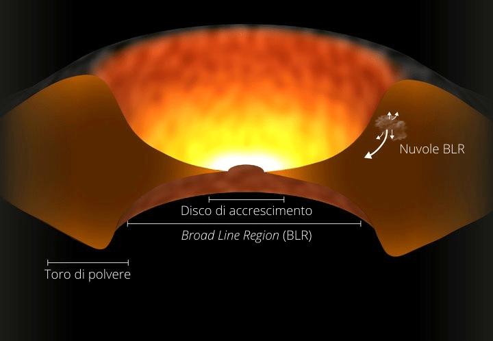 Quasar struttura